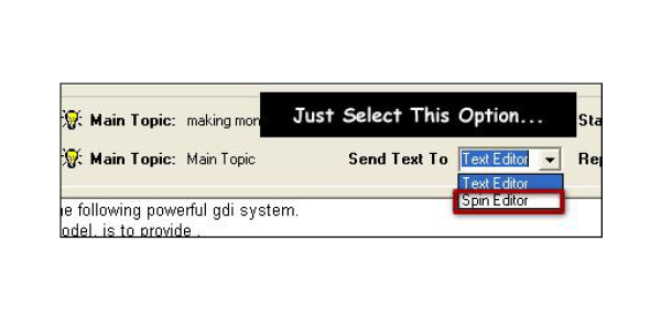Select spin editor option