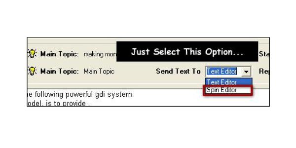 Select spin editor option