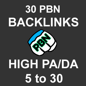 30 High Page Authority Private Blog Network Backlinks