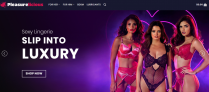 ADULT Toys WordPress Dropshipping Website Ready to make you $$$$$